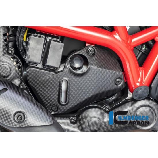 Ilmberger Carbon Cover Frame Right Matt Ducati Monster 1200 MPN - ARR.105.DM17M.K