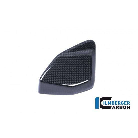 Ilmberger Carbon Esa Box Cover BMW R 1200 GS / Adventure MPN - ESA.013.GS17L.K