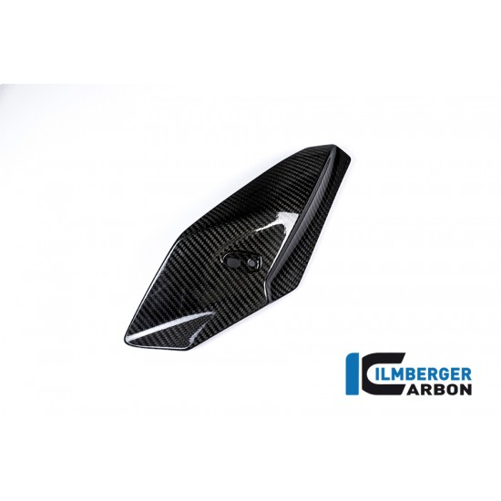 Ilmberger Carbon Front Fairing Side Panel Left BMW S 1000 R MPN - VOL.203.S100N.K