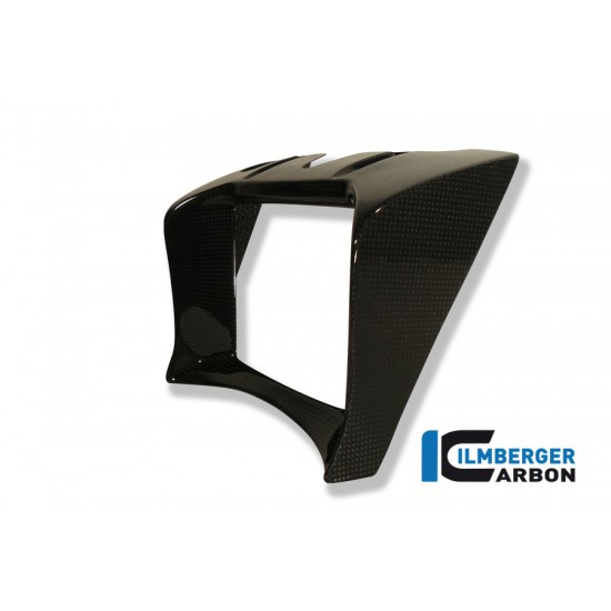 Ilmberger Carbon Oil Cooler Cover BMW R 1200 R MPN - OKA.011.R120R.K