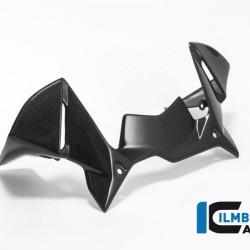 Ilmberger Carbon Windprotector Instruments BMW R 1200 GS / Adventure MPN - WAK.008.GS17L.K